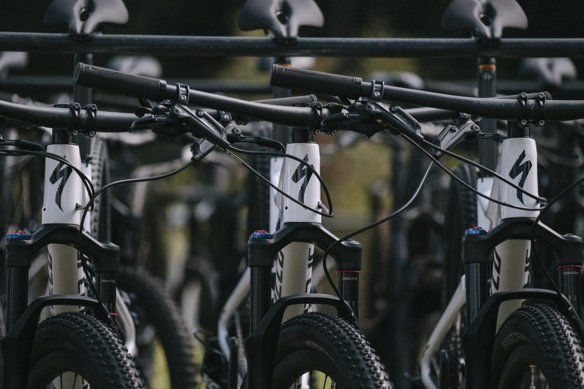 Test the best specialized 2019