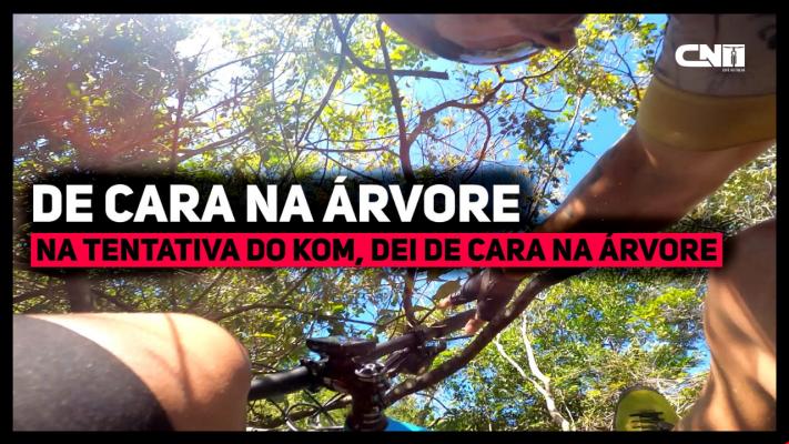 Mountain Bike Fail: Dei de CARA na Árvore